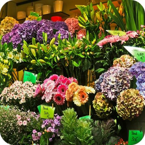 Informez-vous bien: les belles plantes sont parfois toxiques!