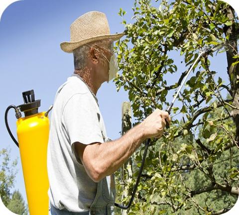 A la maison, au jardin, dans l'agriculture, nous sommes partout confrontés à des produits pour lutter contre ce que nous considérons comme des «nuisibles». Les «pesticides», c'est le nom collectif donné à ces produits chimiques.