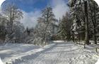 Un hiver sans accrocs.