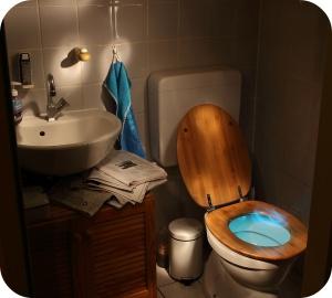 """Les nettoyants pour toilettes se répartissent en deux grandes catégories: les nettoyants à base d'acide et les nettoyants """"avec javel""""."""