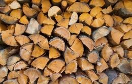 Le bois est composé de matières organiques (carbone, oxygène, hydrogène, azote), de cendres (chaux, magnésie, potassium, silice, acide phosphorique) qui fournissent un excellent engrais mais aussi d'eau.