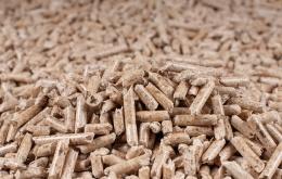 Les pellets (granulés de bois) sont souvent recommandés pour des raisons écologiques parce qu'ils sont considérés comme un combustible neutre en CO2