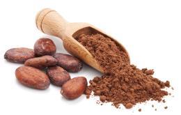 Les chiens sont sensibles à la théobromine présente dans le cacao.