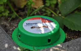La concentration de l'insecticide est généralement très faible, ce qui fait que la quantité totale par appât est réduite.