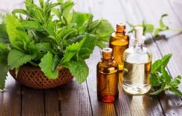 L'origine naturelle et végétale des huiles essentielles les font souvent considérer, à tort, comme inoffensives.